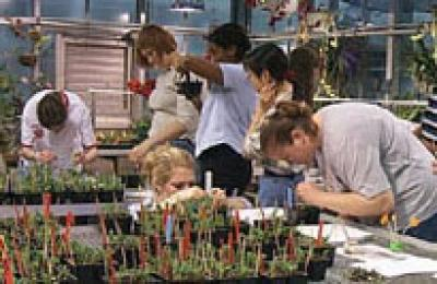 Lab Class in greenhouse