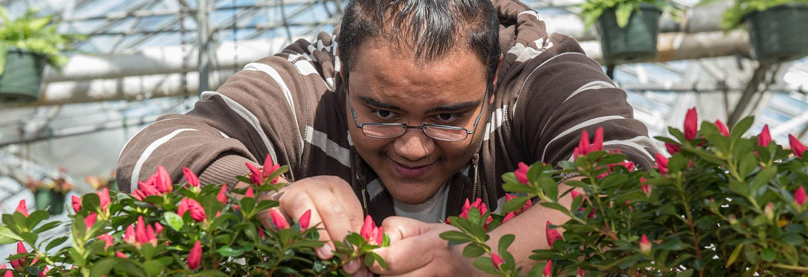 Person working with plants